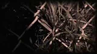 [HD] Secrets    Snow Ghosts Music Video