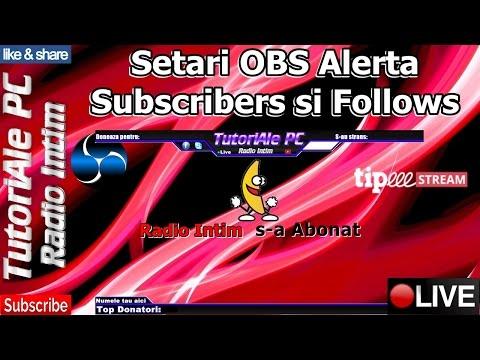 Setari OBS Alerta Subscribers si Follows