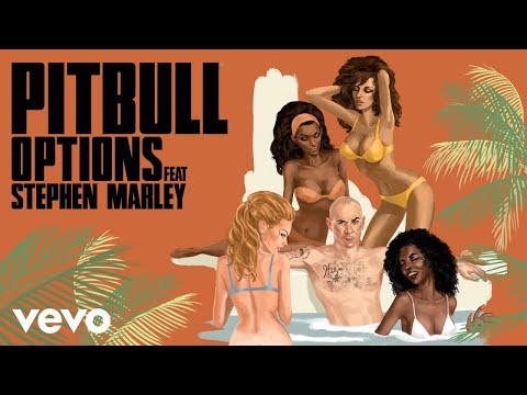 Pitbull - Options (SpydaTEK Remix) [Audio] ft. Stephen Marley