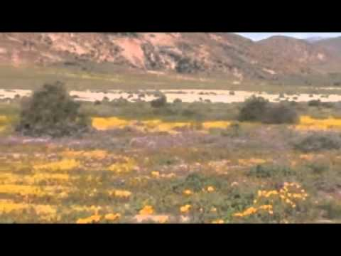 Springbok – Northern Cape – South Africa