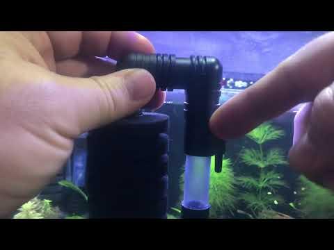 New 9.1 Gallon Rimless AquaMaxx Build - Part Two