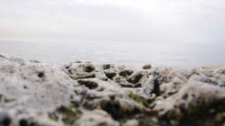 Murad (Wish) Dinlendirici Enstrumantal müzik Dinlendirici video Dinlenme Saati (its time to rest)