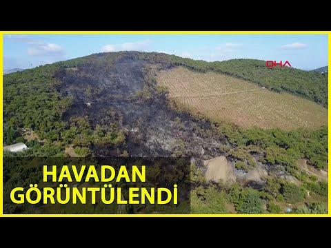 Heybeliada'da Yanan Alanlar Havadan Görüntülendi