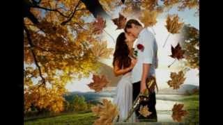 Стефан Митров & Нашата есен