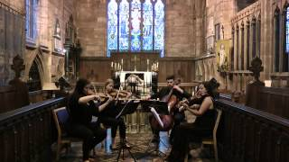 How Long Will I Love You (Ellie Goulding) - Wedding String Quartet