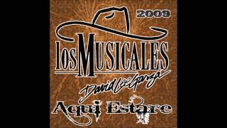 David Lee Garza y Los Musicales   No Fui Yo