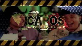 GlobalMX_Promotions_Los_plebes_del_Rancho