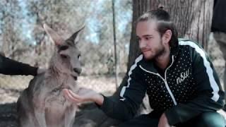 Zedd - Australia & New Zealand Recap 2018