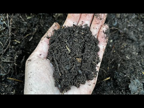 Adding Compost In The Garden