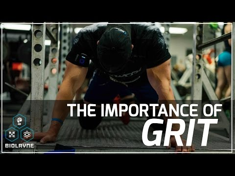The Importance of Grit