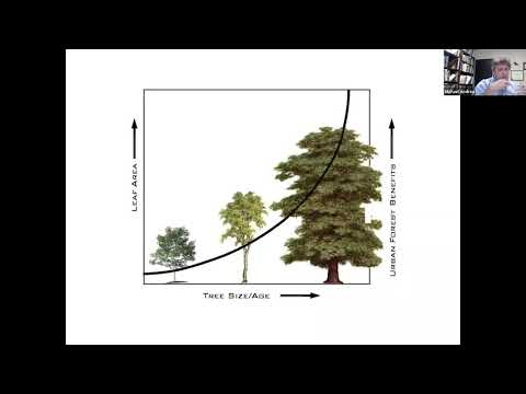 An ecosystem approach to urban forestry #2 (With Robert Northrop and Michael Andreu)