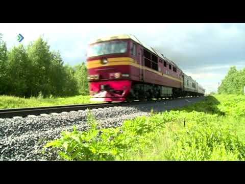 В Эжвинском районе столицы поезд насмерть сбил несовершеннолетнюю девушку