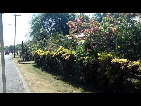 Nicaragua via Golf Cart #5
