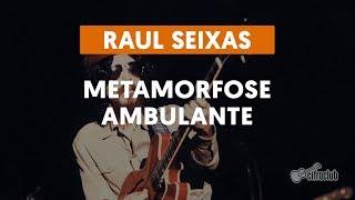 Videoaula Metamorfose Ambulante (aula de violão simplificada)