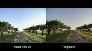 Honor View 20 Vs Oneplus 6t Camera Test Comparison