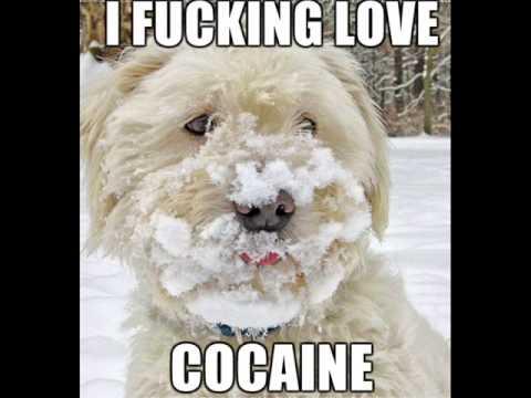 scott-h-biram-real-cocaine-blues-hendrixchild419