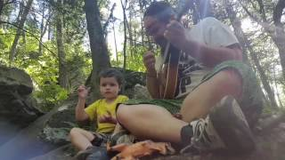 Acriggs Falls / Bordner Cabin / Old State Road mandolin improv jam session feat. Lil Buddha