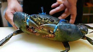 Japonské pouliční jídlo - Obrovský Bahnitý Krab krabové knedlíky chilli plody moře Japonsko