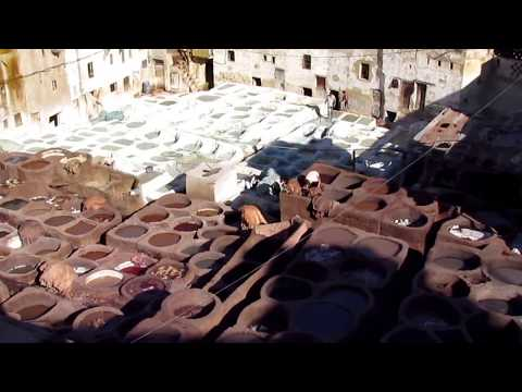 12102011 Fez tanneries