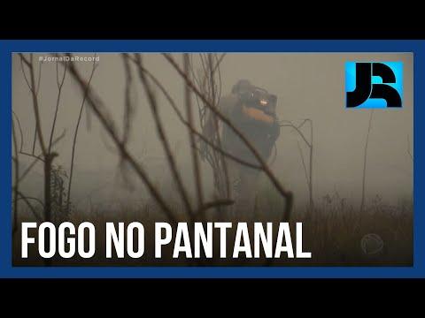 Tempo seco dificulta trabalho de bombeiros e brigadistas no Pantanal