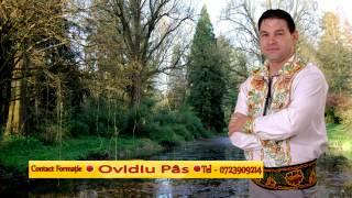 Ovidiu Pas -   Colaj -    Live