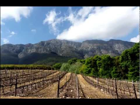 Cape Winelands, Stellenbosch and Franschhoek, Cape Twon, South Africa