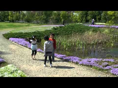 Yachonomori Garden near Morinji-mae Station