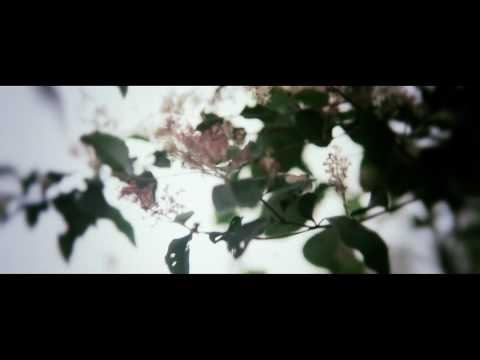 ef-longing-for-colors-official-video-max-li