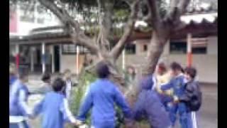 dança circular meus alunos