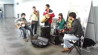 Banda Pay It Forward - Quem és tu Miuda ( cover - Azeitonas )