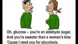 Glucose Song