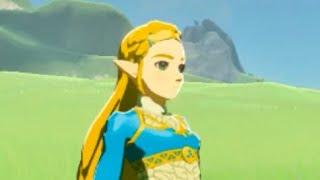 Zelda Enjoying The Plains Of Hyrule