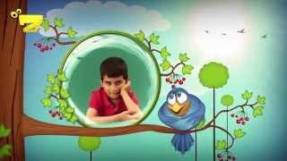 Zarok TV - SILAV