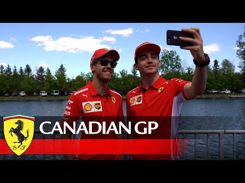 Canadian GP - Time to reply to your questions, Tifosi!