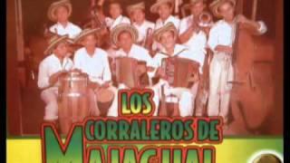 Los Corraleros de Majagual - No tengo culpa