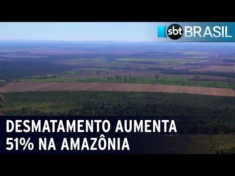 Desmatamento avança 51% na Amazônia nos últimos 11 meses   SBT Brasil (19/07/21)