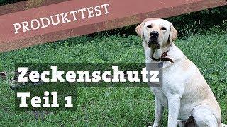 Zeckenschutz für den Hund - TEST dm Zeckenhalsband