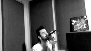 Depeche Mode - Shine ( piano/vocal cover )