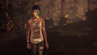 Life is Strange Soundtrack   Obstacles by Syd Matters MV