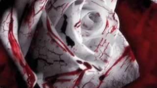 Tori Amos - Blood Roses