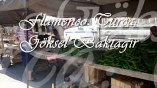 Flamenco Turca: Goksel Baktagir width=
