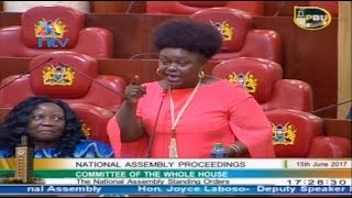 MP Millie Odhiambo's panty remark startles Parliament on closing day