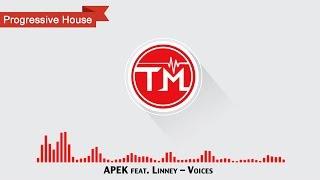 APEK feat. Linney - Voices