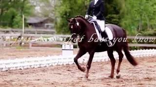 ☼ Equestrian ~ Vidorra ☼
