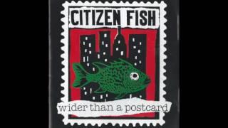 Citizen Fish - Central Nervous System