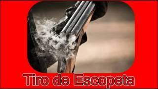 Efeito Sonoro - Tiro de Escopeta