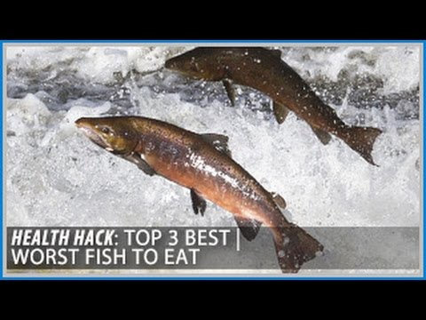 Top 3 Best | Worst Fish to Eat: Health Hacks- Thomas DeLauer