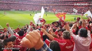 O MOMENTO! Fantástico Golo JONAS! Benfica 5 x 0 Vitória Guimarães HD 60fps