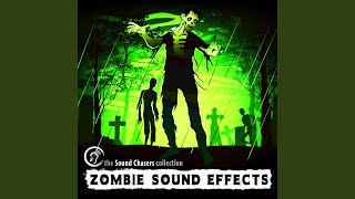 Small Group Growls Zombie Sound Effect