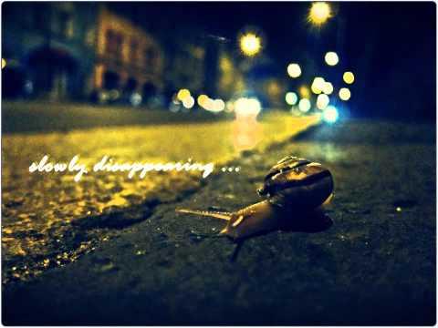 ludwig-van-beethoven-a-melody-of-tears-morcadella